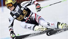 Obří slalom v Aare ovládla Fenningerová, Strachové se nedařilo