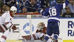 Palát nováčkem roku v NHL? Na Calder Trophy nedosáhl ani Jágr