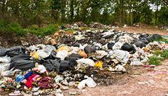Ukliďme Česko. Nejlepší ekologický projekt roku