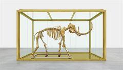 Umění, nebo investice? Ukrajinec si koupil Hirstova mamuta