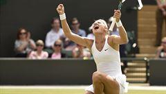 Chci si zopakovat Wimbledon, říká před US Open Šafářová
