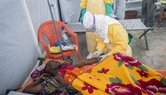 V Africe podlehlo ebole již přes 600 nakažených