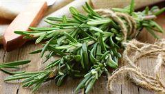 V Řecku se objevil nový objekt pašování: aromatické bylinky