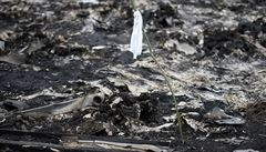 Osud černých skříněk letu MH17: Upravit jejich obsah nelze, poznalo by se to