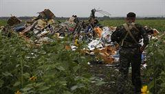 Pád malajsijského letounu nepřežilo šest odborníků na AIDS