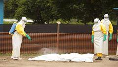Ebola se nepřestává šířit. Guinea uzavřela hranice se dvěma státy