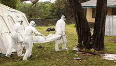Etická komise bude zkoumat experimentální léčbu eboly