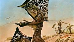 V Brazílii našli nový druh pterosaurů, byli prý velmi družní