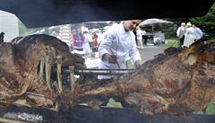 Pečený býk, křepelky. Festival představil historické recepty