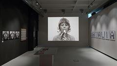 Kontroverzní výstavu ve Zlíně po protestech znovu otevřeli
