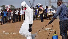 Ebola zapříčiní více obětí i kvůli jiným nemocem, míní experti
