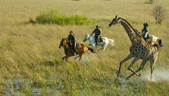 Safari na koních bere dech