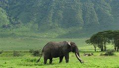 Ngorongoro - mimořádná přírodní památka