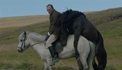 O koních a lidech: Směšní jsou vždy jen ti druzí