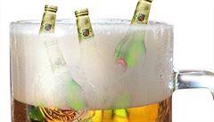 Maier: Za zdražení piva nemůže dražší chmel. Spíš zisk pivovarů