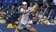 Berdych hladce postoupil do čtvrtfinále US Open, teď vyzve Čiliče