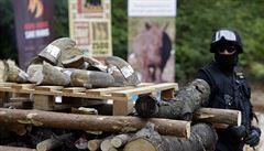 Přes Česko proudí nosorožčí rohy, financují islámský terorismus