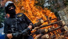 Zoo ve Dvoře Králové spálila rohovinu v milionové hodnotě. Podpoří nosorožce
