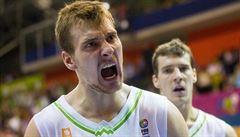Slovinec asi zaplatí půl milionu dolarů, aby mohl hrát s bratrem NBA