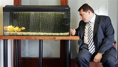 Aukce exkluzivních fotek: Paroubek a rybičky, olympijské radosti...