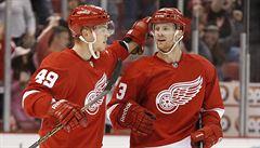 Nevzdal se a teď je Nestrašil v NHL: Nechtěl jsem se vracet jako pes