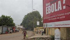 Přežili ebolu. Jejich krev teď může zachránit životy dalších nemocných