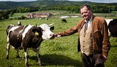BYZNYS ŽIJE: Krávy jsou mi souzené, říká majitel úspěšné farmy