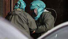 Ptačí chřipka v Rumunsku. Úřady nalezly nakažené pelikány v Dunaji
