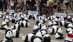 Stovky papírových pand cestují po celém světě