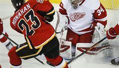 Mrázek vychytal v NHL Detroitu výhru, Poláka zasáhl puk do tváře
