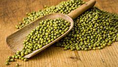 Zdravé a chutné. Jak nechat naklíčit mungo fazole?