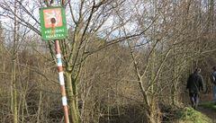 Lesy ČR blokují 60 tisíc hektarů. Církvi je nedáme, vzkázal podnik