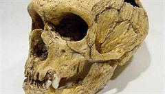 Vědci našli lebku, která dokládá migraci člověka z Afriky