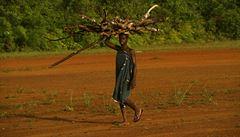 Po stopách UNESCO: Guinea a obchod s orangutany