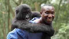 Diváky Jednoho světa nadchl docu-thriller o záchraně goril Virunga