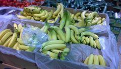 Banánová zásilka kokainu z Lidlu měla 110 kilogramů. Šla 'proředit' až čtyřikrát