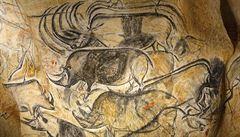 Veřejnost si může poprvé prohlédnout Chauvet, jednu z nejstarších jeskynních galerií