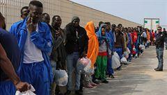 Někteří nám lžou. Ekonomické migranty posílají Italové zpět, popsal europoslanec