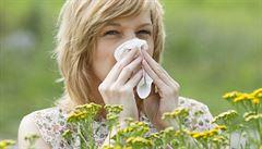 Jak na pylovou alergii? Po příchodu domů se osprchujte a převlečte, radí lékařka