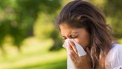 Z neléčené pylové rýmy může vzniknout astma, říká alergolog