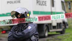 Policisté loni více hřešili, tvrdí inspektoři. Aktivisté o číslech pochybují