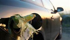 Kvůli biopalivům nás čeká další potravinová krize, míní šéf Nestlé
