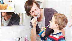 Proč si zuby musí čistit jen člověk?