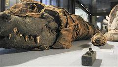 Egypťané švindlovali. Místo mumií zvířat obětovali často jen textil
