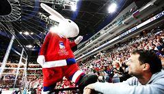Téměř půl miliardy. Český hokej vydělal na šampionátu mnohem více, než čekal