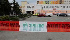 Němeček odvolal šéfa psychiatrické léčebny, která propustila vraha knihovnice
