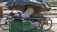 Obětí veder je v Indii už 1700, nejvíce za posledních 20 let