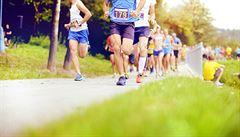 Běh i posilování pod dohledem trenéra. Kam si jít zacvičit zadarmo?