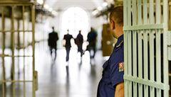 'Osvobodilo' ji těhotenství. Ženu odsouzenou na 28 let za vraždu sběratele pustili z vězení