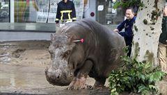 Čeští chovatelé odletěli pomáhat zoo v Tbilisi s uprchlými zvířaty